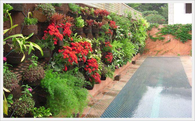 Cuidados para o jardim durante o outono! Verdy Vasos