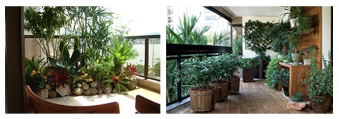 iluminacao de jardim jornal hoje: ambiente fica mais agradável com o auxílio de plantas e flores