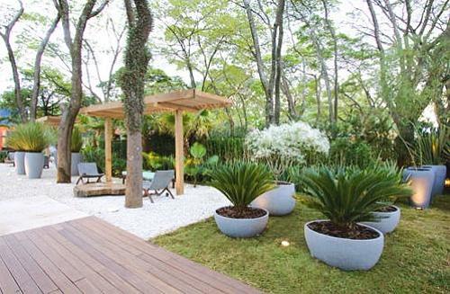 as Plantas adequadas para montar um Jardim Tropical  Verdy Vasos