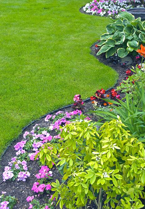 jardimdecoraçãojardimdecorativojardimdeprimaveraflores