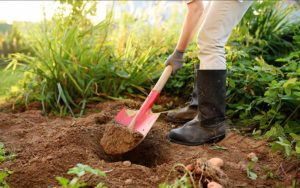 pá para jardinagem